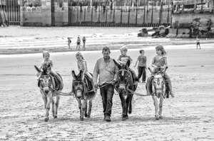 chidren on donkeys